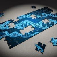 Recherche de paternité, pourquoi privilégier le test ADN ?